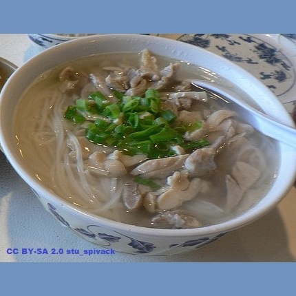 Shirataki noodles recipes dukan